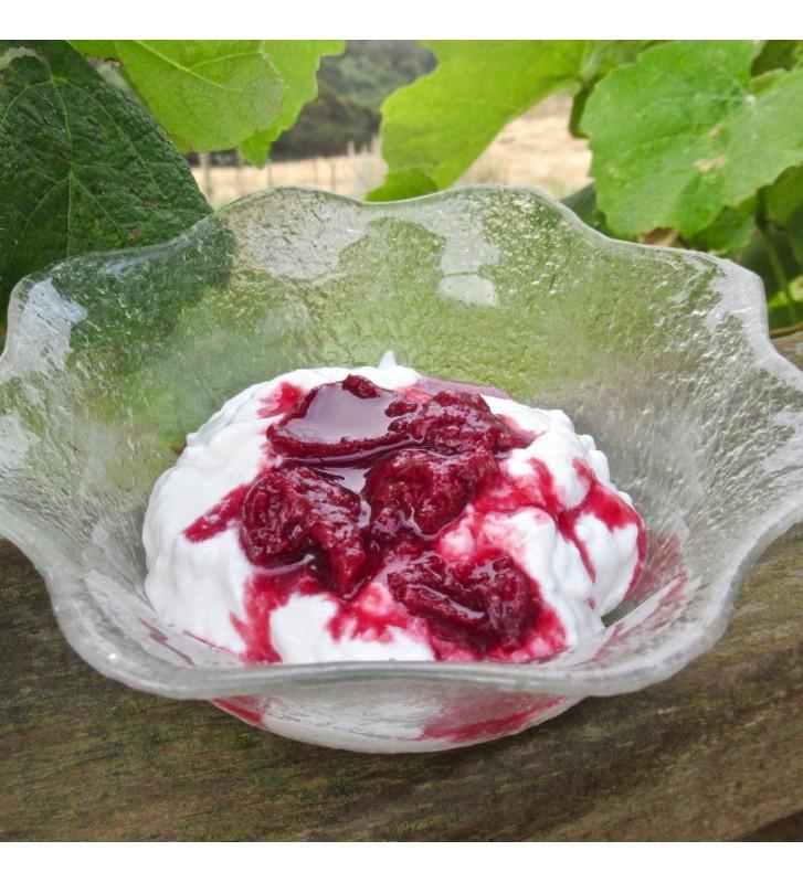 Vegan Probiotic Yoghurt Culture