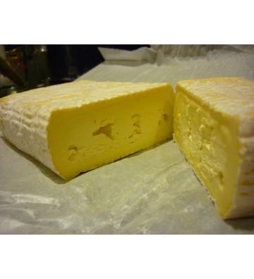 Workshop: Cheese Making