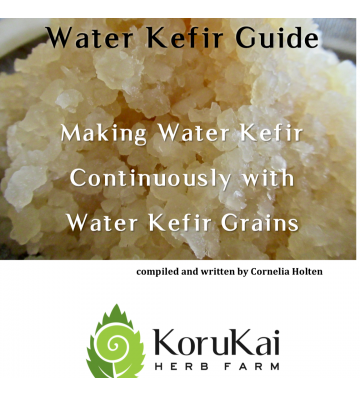 Water Kefir Guide