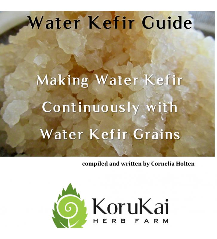 Water Kefir Guide