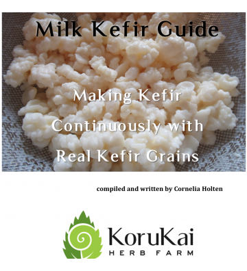 Milk Kefir Guide