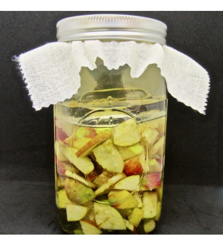 DIY Apple Cider Vinegar Kit