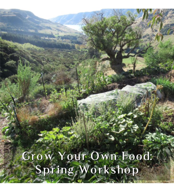 Grow Your Own Food - Spring Workshop