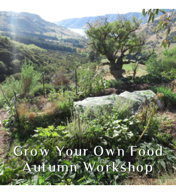 Grow Your Own Food - Autumn...