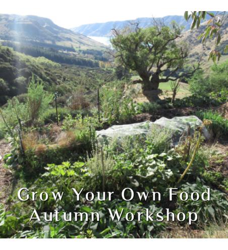 Grow Your Own Food - Autumn Workshop