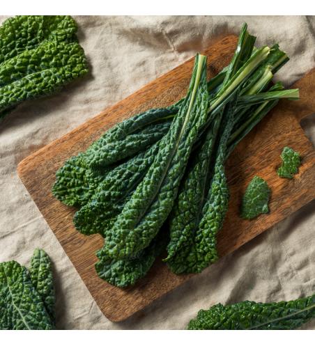 Cavolo Nero Kale Seeds