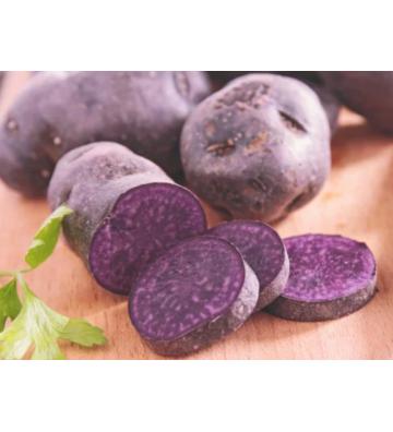 Seed Potatoes Urenika