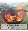 Biochar production