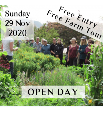 OPEN DAY @ KoruKai Herb Farm