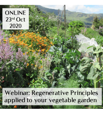 Webinar: Regenerative Principles applied to your vegetable garden