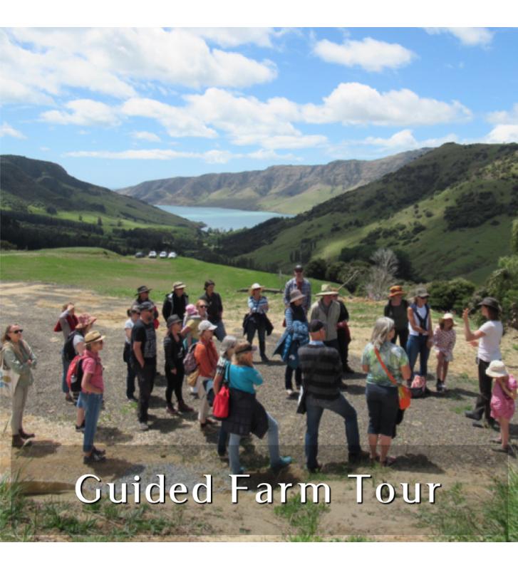 Guided Farm Tour